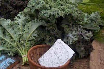 Healthy Eating: Vegetables: Kale