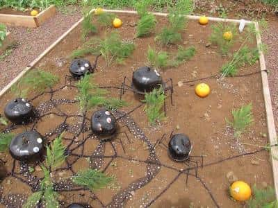 Halloween Decoration - Pumpkin spiders