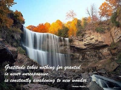 Webster Falls in Hamilton, Ontario, Canada in Autumn