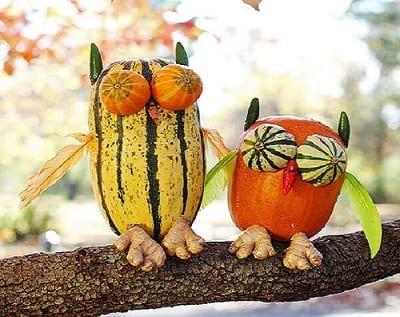 Screech Owl Pumpkin